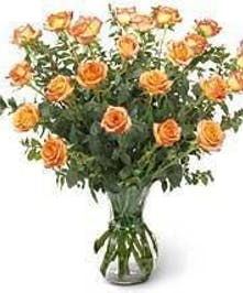 Beautiful Hand Picked Ecuadorian Peach Roses
