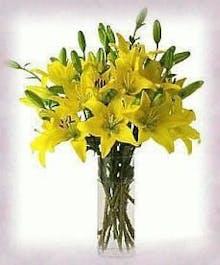 A Vase of Sunshine