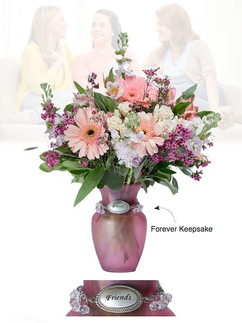 Vase of Life - Friends - Pink