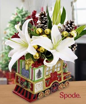 Don't get left behind! Pick up the last edition of the Spode Holiday Train!