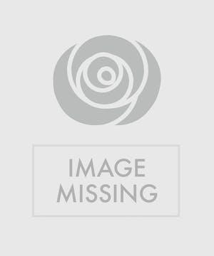 Garden basket of blooming azalea and lush green plants.