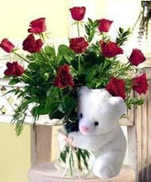 Roses for Mother and a Teddy for Baby