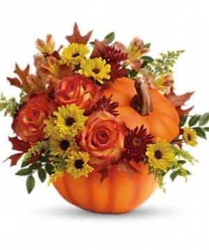 Celebrate the Halloween season with this lovely pumpkin arrangement!