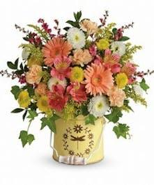 COUNTY SPRING- Boesen The Florist