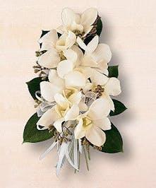 Pure White Elegance