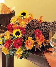 Breathtaking Array of Flowers
