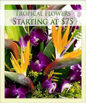 Give a tropical arrangement today from Boesen the Florist!