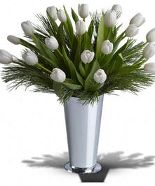 Tulips and Pine Delight