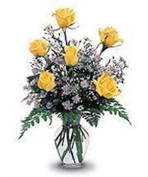 Beautiful Hand Picked Ecuadorian Yellow Roses