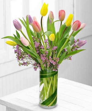 Spring Tulips- Boesen The Florist