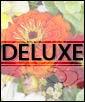 Deluxe (Shown)