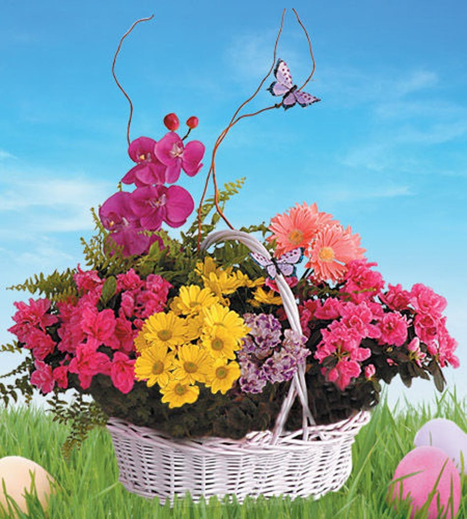 Blooming Garden Basket All The Best Of Spring Boesen The Florist
